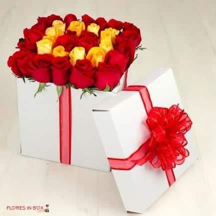 boxflowers 48